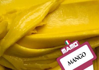 Gelateria Mamo' - Gelato Gusto Mango